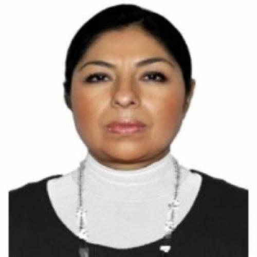 Mujer periodista asume titularidad de la PFP